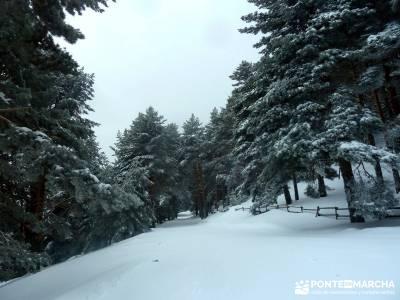 Raquetas de Nieve - Puerto de Cotos; como hacer senderismo; club de montaña de madrid;excursiones t